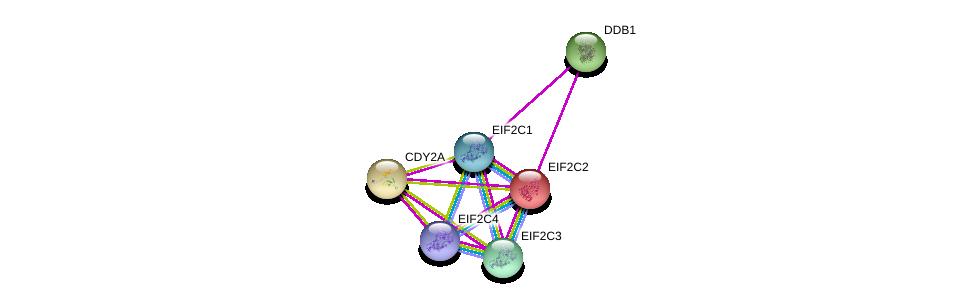 http://string-db.org/version_10/api/image/networkList?limit=0&targetmode=proteins&caller_identity=gene_cards&network_flavor=evidence&identifiers=9606.ENSP00000250838%0d%0a9606.ENSP00000362300%0d%0a9606.ENSP00000220592%0d%0a9606.ENSP00000362287%0d%0a9606.ENSP00000362306%0d%0a9606.ENSP00000301764%0d%0a