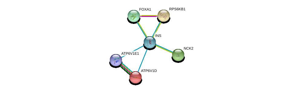 http://string-db.org/version_10/api/image/networkList?limit=0&targetmode=proteins&caller_identity=gene_cards&network_flavor=evidence&identifiers=9606.ENSP00000250971%0d%0a9606.ENSP00000216442%0d%0a9606.ENSP00000225577%0d%0a9606.ENSP00000233154%0d%0a9606.ENSP00000250448%0d%0a9606.ENSP00000253413%0d%0a