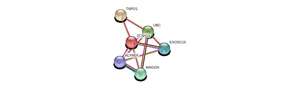 http://string-db.org/version_10/api/image/networkList?limit=0&targetmode=proteins&caller_identity=gene_cards&network_flavor=evidence&identifiers=9606.ENSP00000251038%0d%0a9606.ENSP00000360525%0d%0a9606.ENSP00000344818%0d%0a9606.ENSP00000366135%0d%0a9606.ENSP00000421592%0d%0a9606.ENSP00000336712%0d%0a