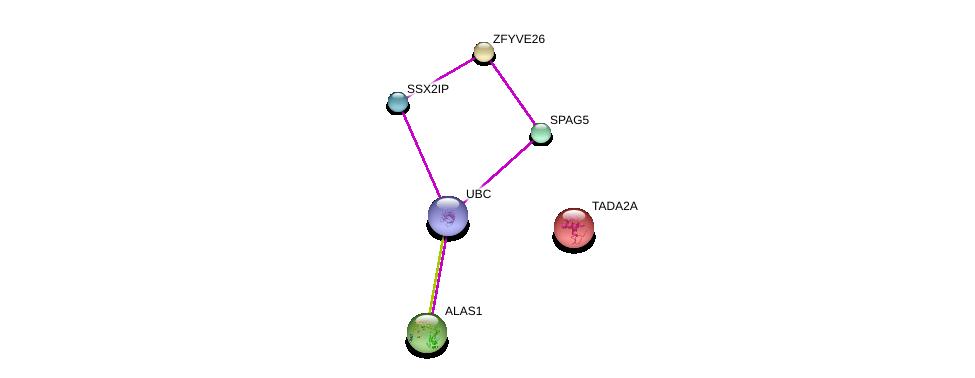 http://string-db.org/version_10/api/image/networkList?limit=0&targetmode=proteins&caller_identity=gene_cards&network_flavor=evidence&identifiers=9606.ENSP00000251119%0d%0a9606.ENSP00000323300%0d%0a9606.ENSP00000340279%0d%0a9606.ENSP00000344818%0d%0a9606.ENSP00000309259%0d%0a9606.ENSP00000225396%0d%0a