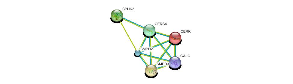 http://string-db.org/version_10/api/image/networkList?limit=0&targetmode=proteins&caller_identity=gene_cards&network_flavor=evidence&identifiers=9606.ENSP00000251363%0d%0a9606.ENSP00000216264%0d%0a9606.ENSP00000219334%0d%0a9606.ENSP00000245222%0d%0a9606.ENSP00000258052%0d%0a9606.ENSP00000261304%0d%0a