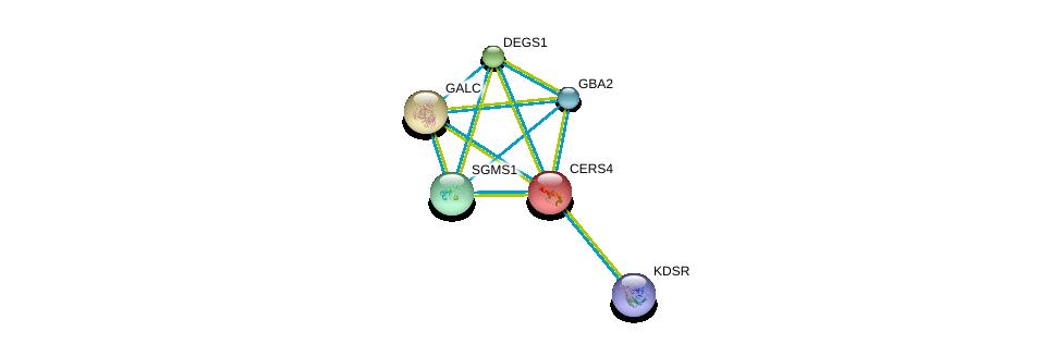 http://string-db.org/version_10/api/image/networkList?limit=0&targetmode=proteins&caller_identity=gene_cards&network_flavor=evidence&identifiers=9606.ENSP00000251363%0d%0a9606.ENSP00000316476%0d%0a9606.ENSP00000385083%0d%0a9606.ENSP00000354829%0d%0a9606.ENSP00000261304%0d%0a9606.ENSP00000367343%0d%0a