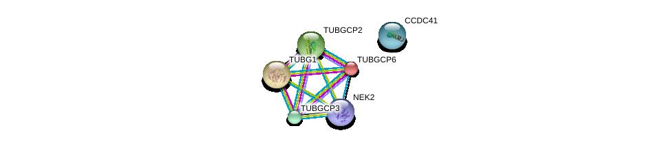 http://string-db.org/version_10/api/image/networkList?limit=0&targetmode=proteins&caller_identity=gene_cards&network_flavor=evidence&identifiers=9606.ENSP00000251413%0d%0a9606.ENSP00000261965%0d%0a9606.ENSP00000252936%0d%0a9606.ENSP00000248846%0d%0a9606.ENSP00000355966%0d%0a9606.ENSP00000344655%0d%0a