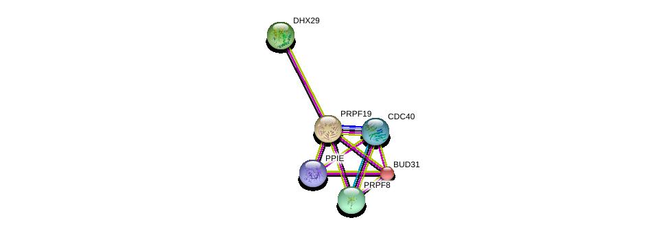 http://string-db.org/version_10/api/image/networkList?limit=0&targetmode=proteins&caller_identity=gene_cards&network_flavor=evidence&identifiers=9606.ENSP00000251636%0d%0a9606.ENSP00000227524%0d%0a9606.ENSP00000304350%0d%0a9606.ENSP00000222969%0d%0a9606.ENSP00000304370%0d%0a9606.ENSP00000361918%0d%0a