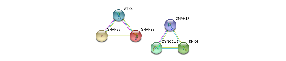 http://string-db.org/version_10/api/image/networkList?limit=0&targetmode=proteins&caller_identity=gene_cards&network_flavor=evidence&identifiers=9606.ENSP00000251775%0d%0a9606.ENSP00000215730%0d%0a9606.ENSP00000374490%0d%0a9606.ENSP00000273130%0d%0a9606.ENSP00000317714%0d%0a9606.ENSP00000249647%0d%0a