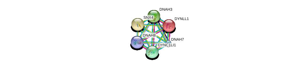 http://string-db.org/version_10/api/image/networkList?limit=0&targetmode=proteins&caller_identity=gene_cards&network_flavor=evidence&identifiers=9606.ENSP00000251775%0d%0a9606.ENSP00000261383%0d%0a9606.ENSP00000273130%0d%0a9606.ENSP00000242577%0d%0a9606.ENSP00000311273%0d%0a9606.ENSP00000333363%0d%0a
