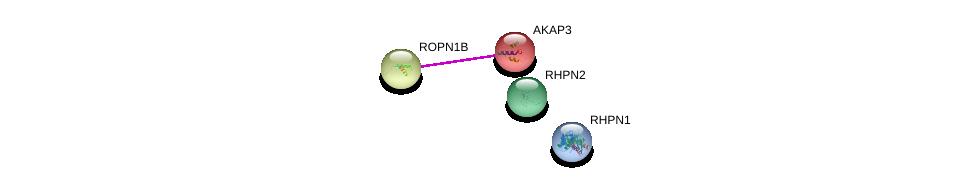 http://string-db.org/version_10/api/image/networkList?limit=0&targetmode=proteins&caller_identity=gene_cards&network_flavor=evidence&identifiers=9606.ENSP00000251776%0d%0a9606.ENSP00000228850%0d%0a9606.ENSP00000254260%0d%0a9606.ENSP00000289013%0d%0a
