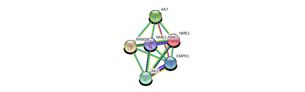 http://string-db.org/version_10/api/image/networkList?limit=0&targetmode=proteins&caller_identity=gene_cards&network_flavor=evidence&identifiers=9606.ENSP00000251810%0d%0a9606.ENSP00000376886%0d%0a9606.ENSP00000346921%0d%0a9606.ENSP00000360939%0d%0a9606.ENSP00000013034%0d%0a9606.ENSP00000267584%0d%0a