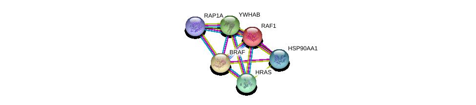 http://string-db.org/version_10/api/image/networkList?limit=0&targetmode=proteins&caller_identity=gene_cards&network_flavor=evidence&identifiers=9606.ENSP00000251849%0d%0a9606.ENSP00000335153%0d%0a9606.ENSP00000309845%0d%0a9606.ENSP00000348786%0d%0a9606.ENSP00000288602%0d%0a9606.ENSP00000300161%0d%0a