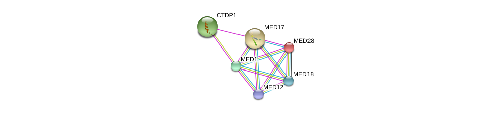 http://string-db.org/version_10/api/image/networkList?limit=0&targetmode=proteins&caller_identity=gene_cards&network_flavor=evidence&identifiers=9606.ENSP00000251871%0d%0a9606.ENSP00000363193%0d%0a9606.ENSP00000300651%0d%0a9606.ENSP00000362948%0d%0a9606.ENSP00000237380%0d%0a9606.ENSP00000299543%0d%0a