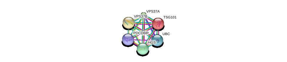 http://string-db.org/version_10/api/image/networkList?limit=0&targetmode=proteins&caller_identity=gene_cards&network_flavor=evidence&identifiers=9606.ENSP00000251968%0d%0a9606.ENSP00000267202%0d%0a9606.ENSP00000331201%0d%0a9606.ENSP00000344818%0d%0a9606.ENSP00000411825%0d%0a9606.ENSP00000318629%0d%0a