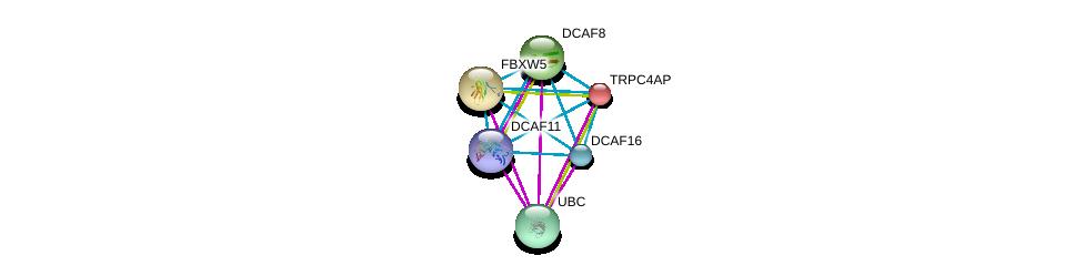 http://string-db.org/version_10/api/image/networkList?limit=0&targetmode=proteins&caller_identity=gene_cards&network_flavor=evidence&identifiers=9606.ENSP00000252015%0d%0a9606.ENSP00000344818%0d%0a9606.ENSP00000313034%0d%0a9606.ENSP00000415556%0d%0a9606.ENSP00000371682%0d%0a9606.ENSP00000318227%0d%0a