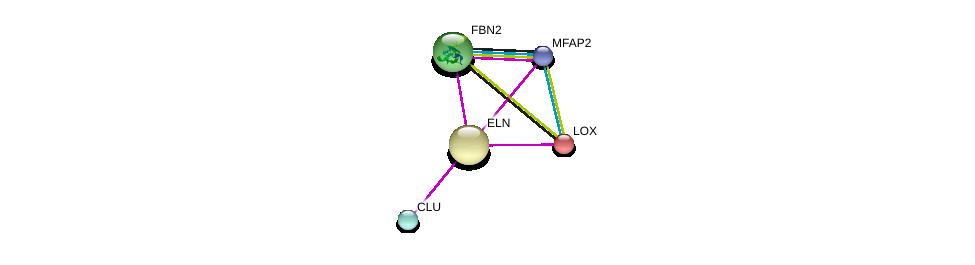 http://string-db.org/version_10/api/image/networkList?limit=0&targetmode=proteins&caller_identity=gene_cards&network_flavor=evidence&identifiers=9606.ENSP00000252034%0d%0a9606.ENSP00000231004%0d%0a9606.ENSP00000262464%0d%0a9606.ENSP00000364685%0d%0a9606.ENSP00000315130%0d%0a9606.ENSP00000315130%0d%0a