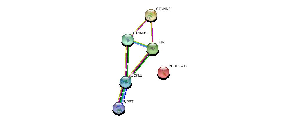 http://string-db.org/version_10/api/image/networkList?limit=0&targetmode=proteins&caller_identity=gene_cards&network_flavor=evidence&identifiers=9606.ENSP00000252085%0d%0a9606.ENSP00000344456%0d%0a9606.ENSP00000346155%0d%0a9606.ENSP00000362481%0d%0a9606.ENSP00000311113%0d%0a9606.ENSP00000307134%0d%0a