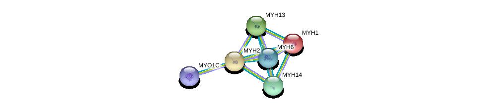 http://string-db.org/version_10/api/image/networkList?limit=0&targetmode=proteins&caller_identity=gene_cards&network_flavor=evidence&identifiers=9606.ENSP00000252172%0d%0a9606.ENSP00000352834%0d%0a9606.ENSP00000245503%0d%0a9606.ENSP00000226207%0d%0a9606.ENSP00000348634%0d%0a9606.ENSP00000262269%0d%0a