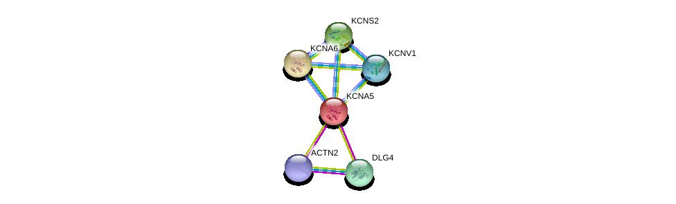 http://string-db.org/version_10/api/image/networkList?limit=0&targetmode=proteins&caller_identity=gene_cards&network_flavor=evidence&identifiers=9606.ENSP00000252321%0d%0a9606.ENSP00000293813%0d%0a9606.ENSP00000355537%0d%0a9606.ENSP00000297404%0d%0a9606.ENSP00000287042%0d%0a9606.ENSP00000280684%0d%0a