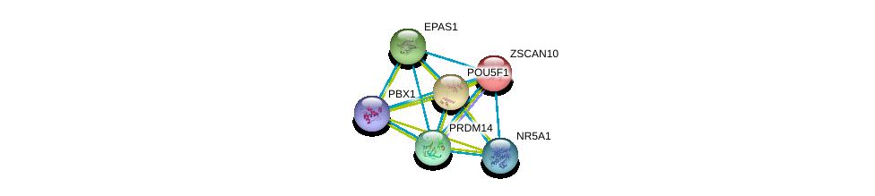 http://string-db.org/version_10/api/image/networkList?limit=0&targetmode=proteins&caller_identity=gene_cards&network_flavor=evidence&identifiers=9606.ENSP00000252463%0d%0a9606.ENSP00000405890%0d%0a9606.ENSP00000263734%0d%0a9606.ENSP00000276594%0d%0a9606.ENSP00000259915%0d%0a9606.ENSP00000362690%0d%0a