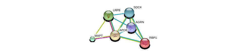 http://string-db.org/version_10/api/image/networkList?limit=0&targetmode=proteins&caller_identity=gene_cards&network_flavor=evidence&identifiers=9606.ENSP00000252486%0d%0a9606.ENSP00000303634%0d%0a9606.ENSP00000340820%0d%0a9606.ENSP00000361818%0d%0a9606.ENSP00000368678%0d%0a9606.ENSP00000232219%0d%0a