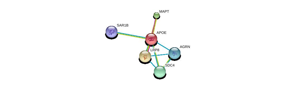 http://string-db.org/version_10/api/image/networkList?limit=0&targetmode=proteins&caller_identity=gene_cards&network_flavor=evidence&identifiers=9606.ENSP00000252486%0d%0a9606.ENSP00000303634%0d%0a9606.ENSP00000340820%0d%0a9606.ENSP00000361818%0d%0a9606.ENSP00000368678%0d%0a9606.ENSP00000385432%0d%0a