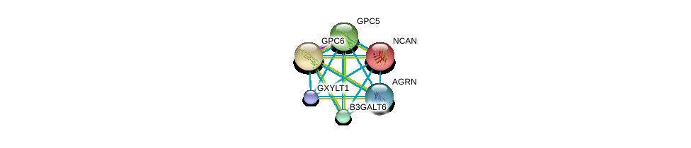 http://string-db.org/version_10/api/image/networkList?limit=0&targetmode=proteins&caller_identity=gene_cards&network_flavor=evidence&identifiers=9606.ENSP00000252575%0d%0a9606.ENSP00000381666%0d%0a9606.ENSP00000368678%0d%0a9606.ENSP00000368496%0d%0a9606.ENSP00000366267%0d%0a9606.ENSP00000366246%0d%0a