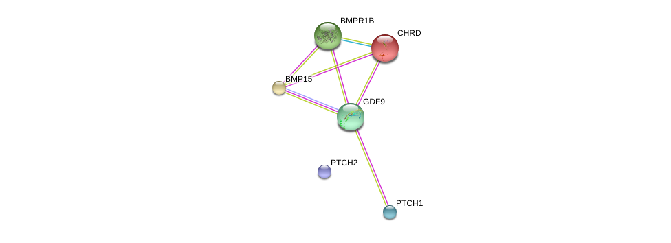 http://string-db.org/version_10/api/image/networkList?limit=0&targetmode=proteins&caller_identity=gene_cards&network_flavor=evidence&identifiers=9606.ENSP00000252677%0d%0a9606.ENSP00000264568%0d%0a9606.ENSP00000296875%0d%0a9606.ENSP00000204604%0d%0a9606.ENSP00000361266%0d%0a9606.ENSP00000332353%0d%0a