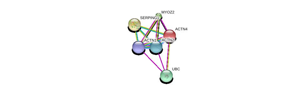 http://string-db.org/version_10/api/image/networkList?limit=0&targetmode=proteins&caller_identity=gene_cards&network_flavor=evidence&identifiers=9606.ENSP00000252699%0d%0a9606.ENSP00000355537%0d%0a9606.ENSP00000377941%0d%0a9606.ENSP00000344818%0d%0a9606.ENSP00000306997%0d%0a9606.ENSP00000278407%0d%0a
