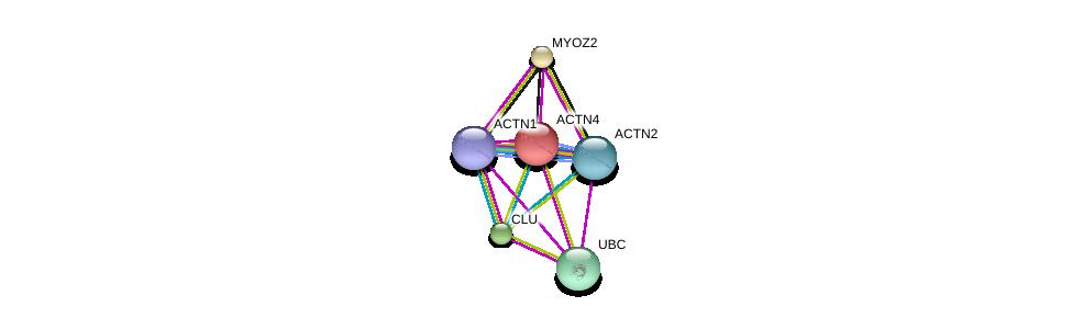http://string-db.org/version_10/api/image/networkList?limit=0&targetmode=proteins&caller_identity=gene_cards&network_flavor=evidence&identifiers=9606.ENSP00000252699%0d%0a9606.ENSP00000355537%0d%0a9606.ENSP00000377941%0d%0a9606.ENSP00000344818%0d%0a9606.ENSP00000306997%0d%0a9606.ENSP00000315130%0d%0a