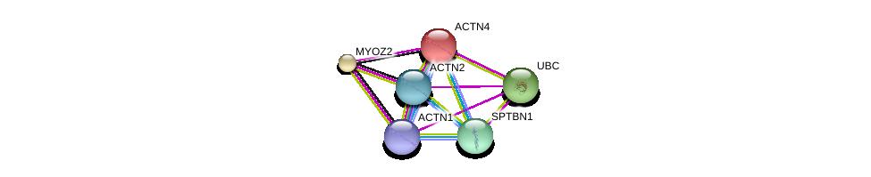 http://string-db.org/version_10/api/image/networkList?limit=0&targetmode=proteins&caller_identity=gene_cards&network_flavor=evidence&identifiers=9606.ENSP00000252699%0d%0a9606.ENSP00000355537%0d%0a9606.ENSP00000377941%0d%0a9606.ENSP00000344818%0d%0a9606.ENSP00000306997%0d%0a9606.ENSP00000349259%0d%0a