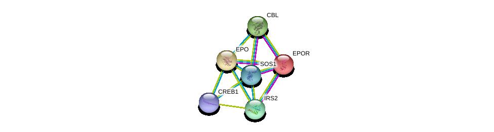 http://string-db.org/version_10/api/image/networkList?limit=0&targetmode=proteins&caller_identity=gene_cards&network_flavor=evidence&identifiers=9606.ENSP00000252723%0d%0a9606.ENSP00000222139%0d%0a9606.ENSP00000264033%0d%0a9606.ENSP00000365016%0d%0a9606.ENSP00000387699%0d%0a9606.ENSP00000384675%0d%0a
