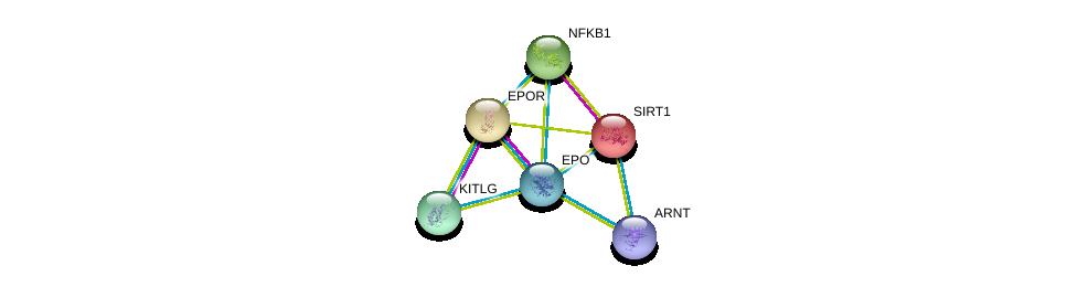 http://string-db.org/version_10/api/image/networkList?limit=0&targetmode=proteins&caller_identity=gene_cards&network_flavor=evidence&identifiers=9606.ENSP00000252723%0d%0a9606.ENSP00000222139%0d%0a9606.ENSP00000351407%0d%0a9606.ENSP00000212015%0d%0a9606.ENSP00000226574%0d%0a9606.ENSP00000228280%0d%0a