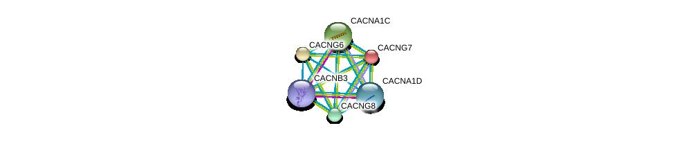 http://string-db.org/version_10/api/image/networkList?limit=0&targetmode=proteins&caller_identity=gene_cards&network_flavor=evidence&identifiers=9606.ENSP00000252729%0d%0a9606.ENSP00000266376%0d%0a9606.ENSP00000270458%0d%0a9606.ENSP00000288139%0d%0a9606.ENSP00000301050%0d%0a9606.ENSP00000222212%0d%0a