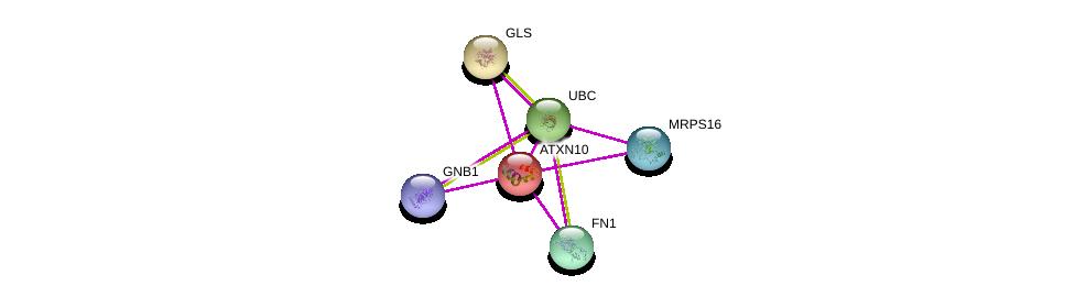http://string-db.org/version_10/api/image/networkList?limit=0&targetmode=proteins&caller_identity=gene_cards&network_flavor=evidence&identifiers=9606.ENSP00000252934%0d%0a9606.ENSP00000344818%0d%0a9606.ENSP00000346839%0d%0a9606.ENSP00000362036%0d%0a9606.ENSP00000367869%0d%0a9606.ENSP00000317379%0d%0a