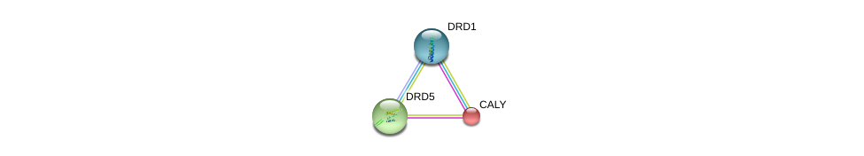 http://string-db.org/version_10/api/image/networkList?limit=0&targetmode=proteins&caller_identity=gene_cards&network_flavor=evidence&identifiers=9606.ENSP00000252939%0d%0a9606.ENSP00000327652%0d%0a9606.ENSP00000306129%0d%0a