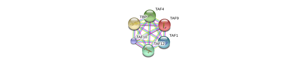 http://string-db.org/version_10/api/image/networkList?limit=0&targetmode=proteins&caller_identity=gene_cards&network_flavor=evidence&identifiers=9606.ENSP00000252996%0d%0a9606.ENSP00000230354%0d%0a9606.ENSP00000263974%0d%0a9606.ENSP00000276072%0d%0a9606.ENSP00000299424%0d%0a9606.ENSP00000217893%0d%0a