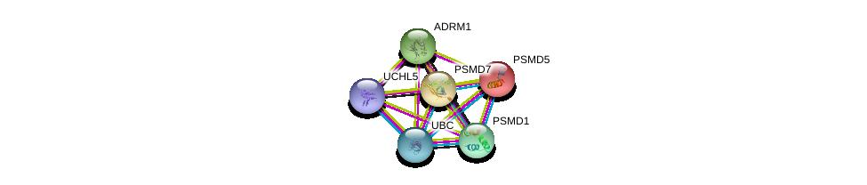http://string-db.org/version_10/api/image/networkList?limit=0&targetmode=proteins&caller_identity=gene_cards&network_flavor=evidence&identifiers=9606.ENSP00000253003%0d%0a9606.ENSP00000210313%0d%0a9606.ENSP00000219313%0d%0a9606.ENSP00000344818%0d%0a9606.ENSP00000356425%0d%0a9606.ENSP00000309474%0d%0a
