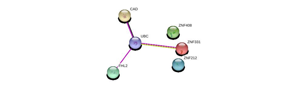 http://string-db.org/version_10/api/image/networkList?limit=0&targetmode=proteins&caller_identity=gene_cards&network_flavor=evidence&identifiers=9606.ENSP00000253144%0d%0a9606.ENSP00000309606%0d%0a9606.ENSP00000322909%0d%0a9606.ENSP00000338572%0d%0a9606.ENSP00000344818%0d%0a9606.ENSP00000264705%0d%0a