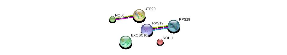 http://string-db.org/version_10/api/image/networkList?limit=0&targetmode=proteins&caller_identity=gene_cards&network_flavor=evidence&identifiers=9606.ENSP00000253247%0d%0a9606.ENSP00000297990%0d%0a9606.ENSP00000366135%0d%0a9606.ENSP00000379339%0d%0a9606.ENSP00000261637%0d%0a9606.ENSP00000470004%0d%0a