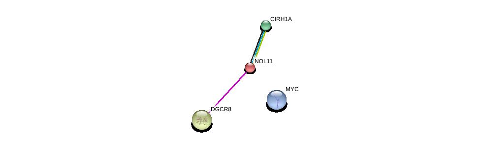 http://string-db.org/version_10/api/image/networkList?limit=0&targetmode=proteins&caller_identity=gene_cards&network_flavor=evidence&identifiers=9606.ENSP00000253247%0d%0a9606.ENSP00000327179%0d%0a9606.ENSP00000263209%0d%0a9606.ENSP00000263209%0d%0a9606.ENSP00000263209%0d%0a9606.ENSP00000367207%0d%0a