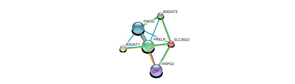 http://string-db.org/version_10/api/image/networkList?limit=0&targetmode=proteins&caller_identity=gene_cards&network_flavor=evidence&identifiers=9606.ENSP00000253270%0d%0a9606.ENSP00000287590%0d%0a9606.ENSP00000321874%0d%0a9606.ENSP00000363827%0d%0a9606.ENSP00000343924%0d%0a9606.ENSP00000347041%0d%0a