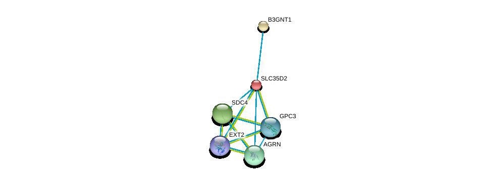 http://string-db.org/version_10/api/image/networkList?limit=0&targetmode=proteins&caller_identity=gene_cards&network_flavor=evidence&identifiers=9606.ENSP00000253270%0d%0a9606.ENSP00000379032%0d%0a9606.ENSP00000361818%0d%0a9606.ENSP00000368678%0d%0a9606.ENSP00000309096%0d%0a9606.ENSP00000377836%0d%0a