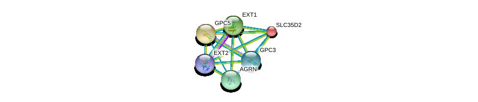 http://string-db.org/version_10/api/image/networkList?limit=0&targetmode=proteins&caller_identity=gene_cards&network_flavor=evidence&identifiers=9606.ENSP00000253270%0d%0a9606.ENSP00000379032%0d%0a9606.ENSP00000377836%0d%0a9606.ENSP00000368678%0d%0a9606.ENSP00000367446%0d%0a9606.ENSP00000366267%0d%0a