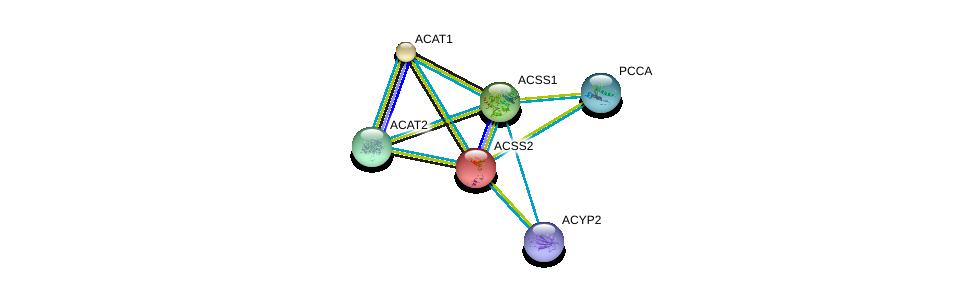 http://string-db.org/version_10/api/image/networkList?limit=0&targetmode=proteins&caller_identity=gene_cards&network_flavor=evidence&identifiers=9606.ENSP00000253382%0d%0a9606.ENSP00000316924%0d%0a9606.ENSP00000356015%0d%0a9606.ENSP00000365462%0d%0a9606.ENSP00000378161%0d%0a9606.ENSP00000265838%0d%0a