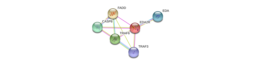 http://string-db.org/version_10/api/image/networkList?limit=0&targetmode=proteins&caller_identity=gene_cards&network_flavor=evidence&identifiers=9606.ENSP00000253392%0d%0a9606.ENSP00000337853%0d%0a9606.ENSP00000376500%0d%0a9606.ENSP00000363680%0d%0a9606.ENSP00000301838%0d%0a9606.ENSP00000351273%0d%0a