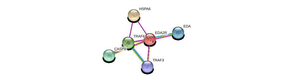 http://string-db.org/version_10/api/image/networkList?limit=0&targetmode=proteins&caller_identity=gene_cards&network_flavor=evidence&identifiers=9606.ENSP00000253392%0d%0a9606.ENSP00000337853%0d%0a9606.ENSP00000376500%0d%0a9606.ENSP00000363680%0d%0a9606.ENSP00000351273%0d%0a9606.ENSP00000310219%0d%0a