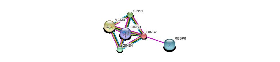http://string-db.org/version_10/api/image/networkList?limit=0&targetmode=proteins&caller_identity=gene_cards&network_flavor=evidence&identifiers=9606.ENSP00000253462%0d%0a9606.ENSP00000401018%0d%0a9606.ENSP00000276533%0d%0a9606.ENSP00000262460%0d%0a9606.ENSP00000262105%0d%0a9606.ENSP00000317872%0d%0a