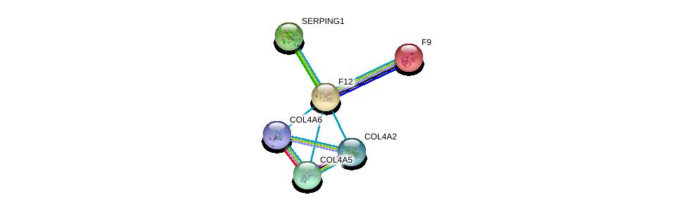 http://string-db.org/version_10/api/image/networkList?limit=0&targetmode=proteins&caller_identity=gene_cards&network_flavor=evidence&identifiers=9606.ENSP00000253496%0d%0a9606.ENSP00000218099%0d%0a9606.ENSP00000278407%0d%0a9606.ENSP00000331902%0d%0a9606.ENSP00000353654%0d%0a9606.ENSP00000361290%0d%0a