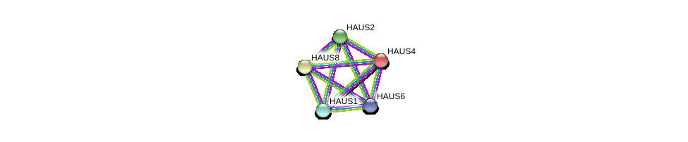 http://string-db.org/version_10/api/image/networkList?limit=0&targetmode=proteins&caller_identity=gene_cards&network_flavor=evidence&identifiers=9606.ENSP00000253669%0d%0a9606.ENSP00000369871%0d%0a9606.ENSP00000260372%0d%0a9606.ENSP00000282058%0d%0a9606.ENSP00000206474%0d%0a9606.ENSP00000206474%0d%0a