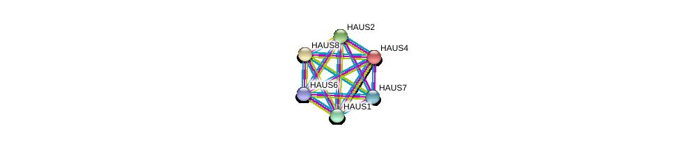 http://string-db.org/version_10/api/image/networkList?limit=0&targetmode=proteins&caller_identity=gene_cards&network_flavor=evidence&identifiers=9606.ENSP00000253669%0d%0a9606.ENSP00000369871%0d%0a9606.ENSP00000282058%0d%0a9606.ENSP00000206474%0d%0a9606.ENSP00000260372%0d%0a9606.ENSP00000359239%0d%0a