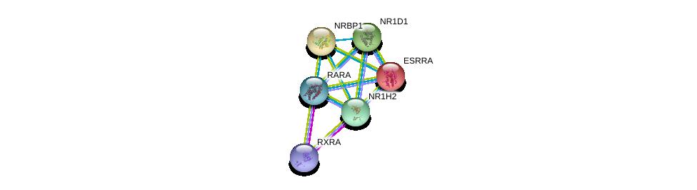 http://string-db.org/version_10/api/image/networkList?limit=0&targetmode=proteins&caller_identity=gene_cards&network_flavor=evidence&identifiers=9606.ENSP00000253727%0d%0a9606.ENSP00000419692%0d%0a9606.ENSP00000000442%0d%0a9606.ENSP00000233557%0d%0a9606.ENSP00000246672%0d%0a9606.ENSP00000254066%0d%0a