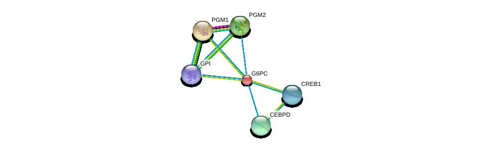 http://string-db.org/version_10/api/image/networkList?limit=0&targetmode=proteins&caller_identity=gene_cards&network_flavor=evidence&identifiers=9606.ENSP00000253801%0d%0a9606.ENSP00000360124%0d%0a9606.ENSP00000371393%0d%0a9606.ENSP00000386165%0d%0a9606.ENSP00000387699%0d%0a9606.ENSP00000405573%0d%0a
